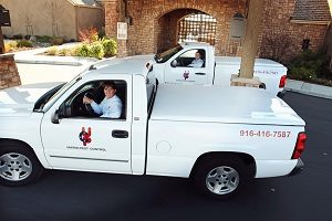 United pest control service vehicles